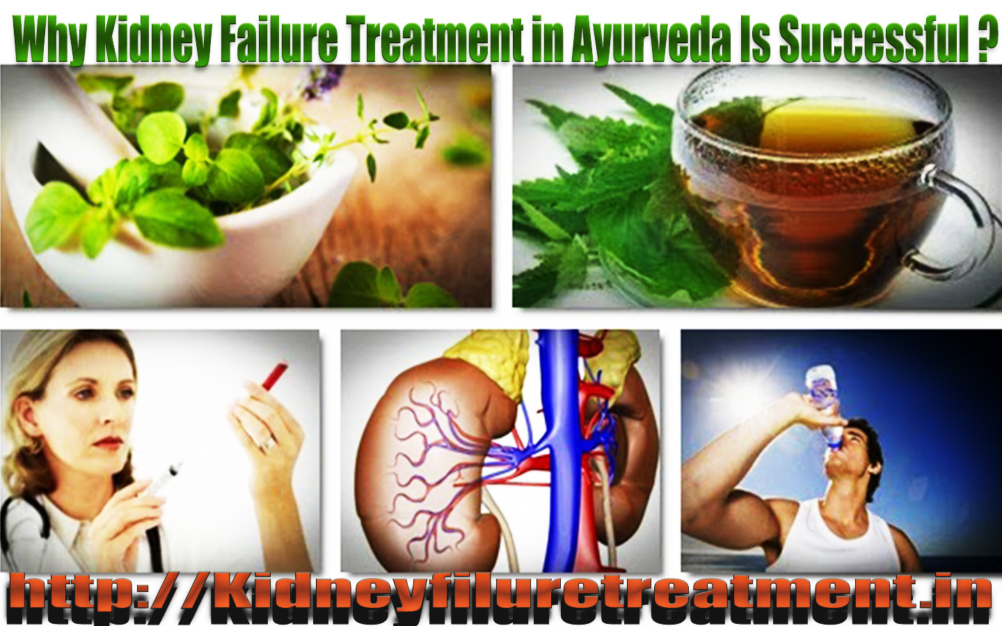 Why Kidney Failure Treatment in Ayurveda Is Successful