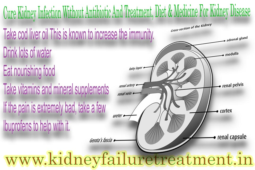kidney treatment without-antibiotic