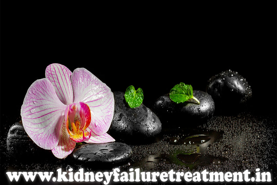 proteinuria treatment clinic