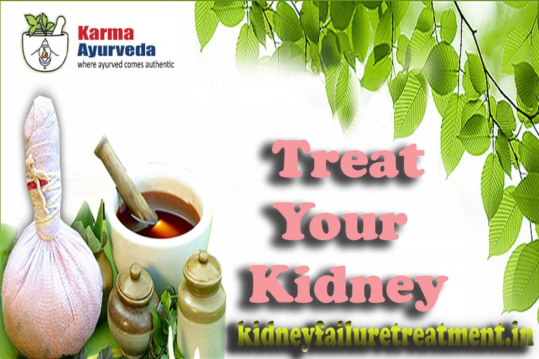ayurvedic renal kidney failure