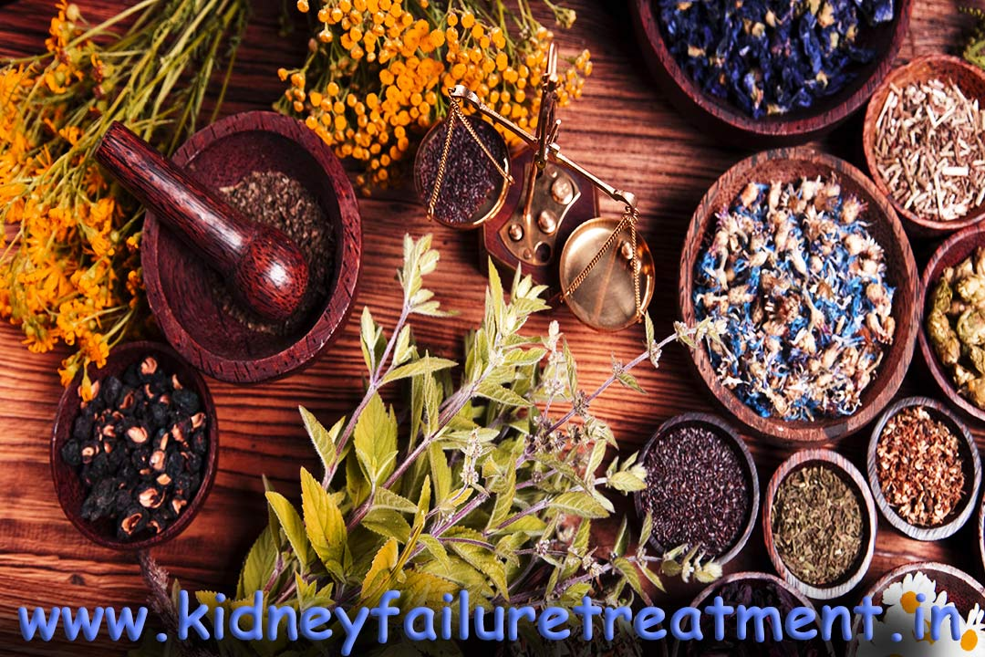 Popular Ayurvedic Doctors For Kidney Failure Treatment