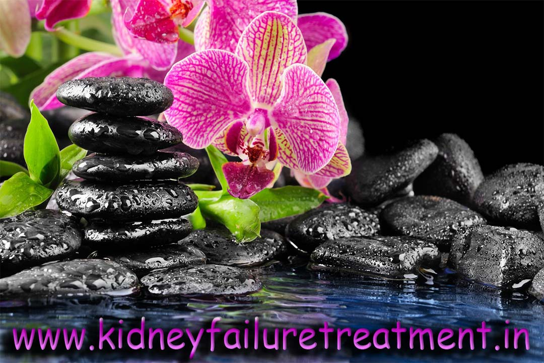 Ayurvedic Medicine For Kidney Failure Treatment