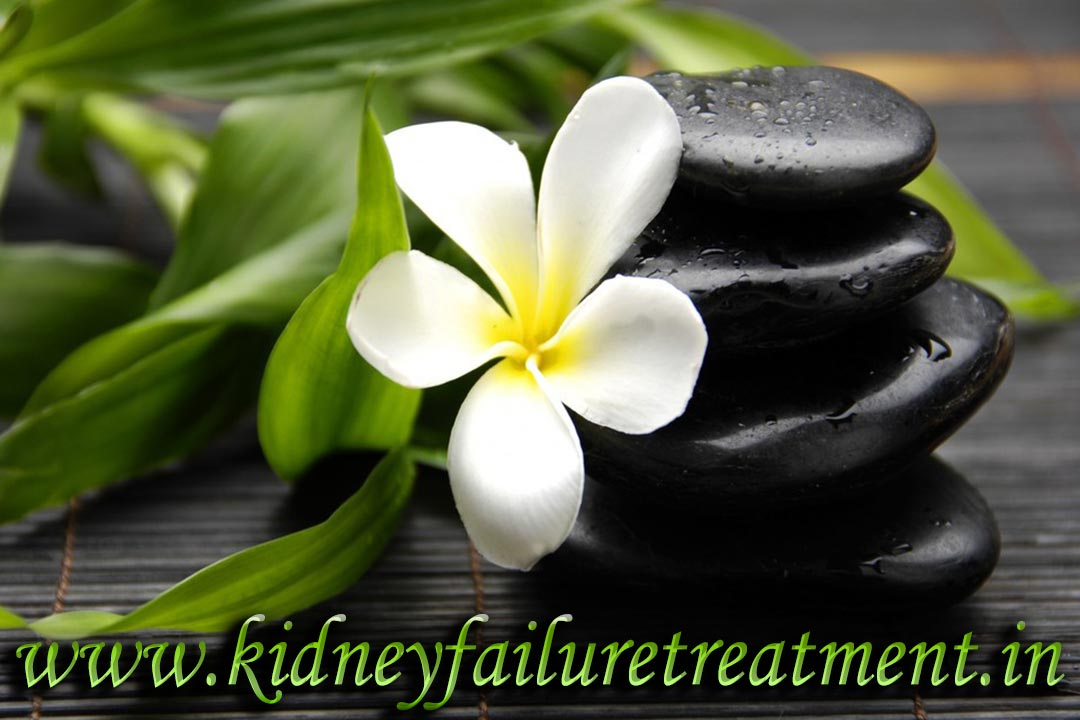 Polycystic Kidney Disease Treatment PKD