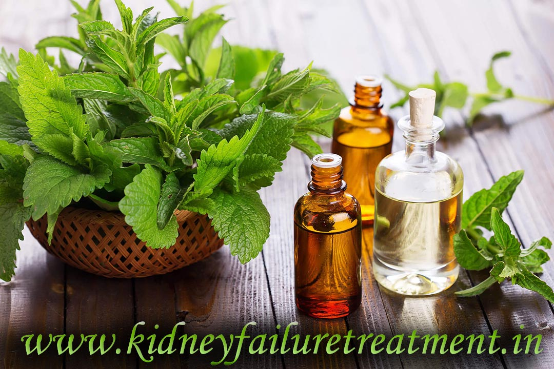 Kidney Failure Treatment In Athens