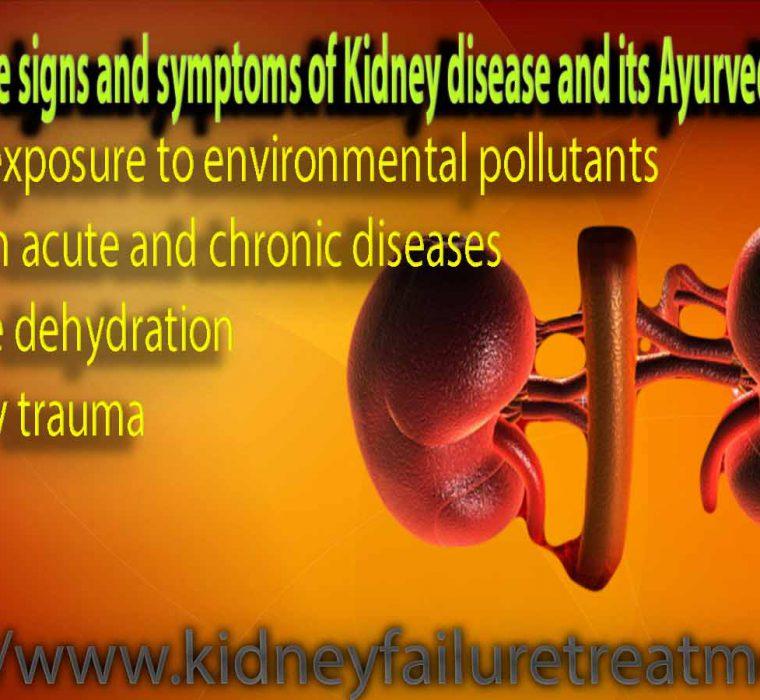 kidney treatment solution