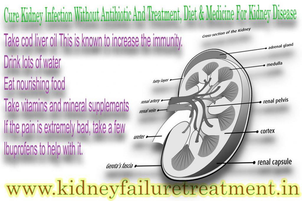 Urinary Tract Infection UTI, Ayurvedic Medicine For Kidney