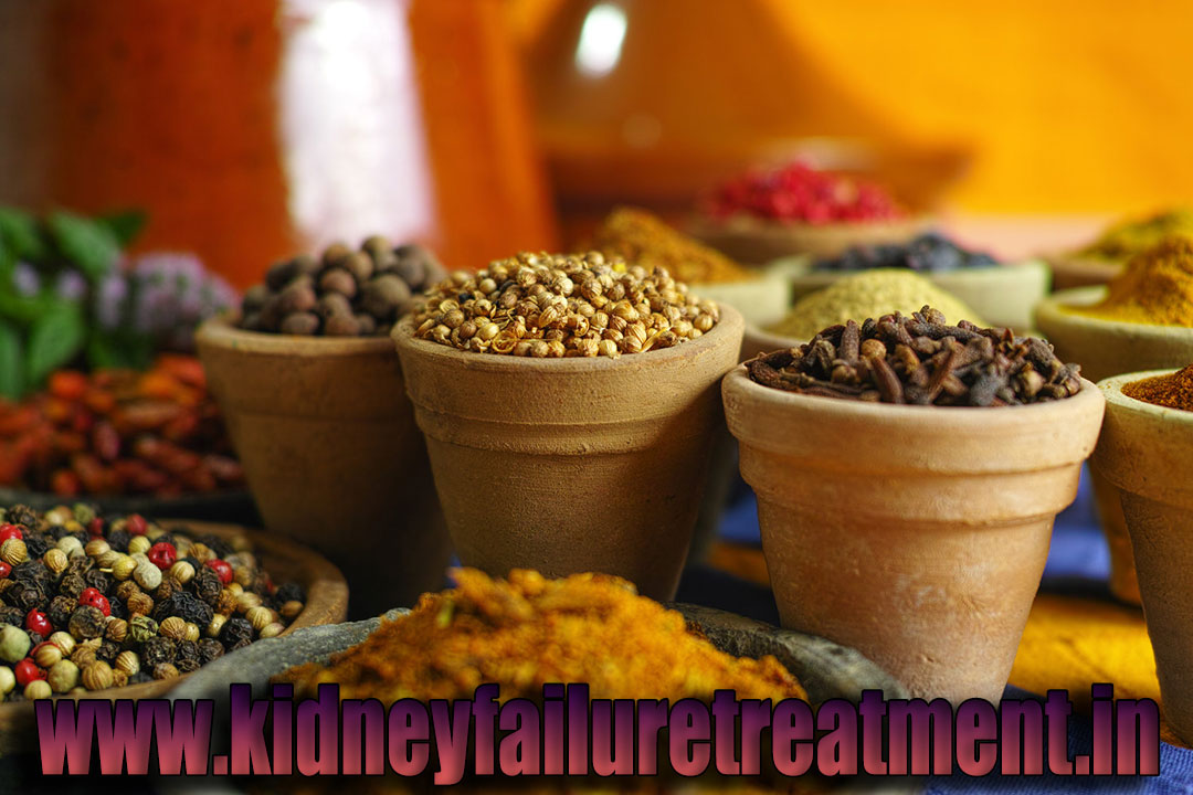 Ayurvedic doctor kidney treatment madhya pradesh indore