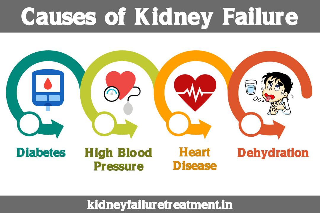 Ayurvedic Treatment For Kidney Failure In Pune Kidney Failure Disease