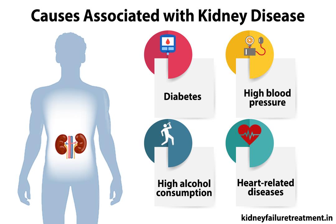 Ayurvedic medicines for kidney disease