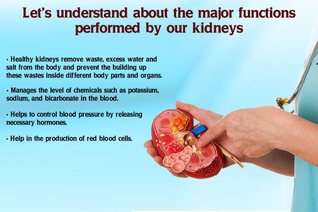How To Avoid Kidney Dialysis Naturally  Karma Ayurveda