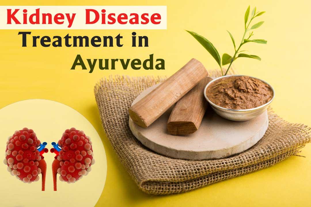 Kidney-disease-treatment-in-Ayurveda(CI)
