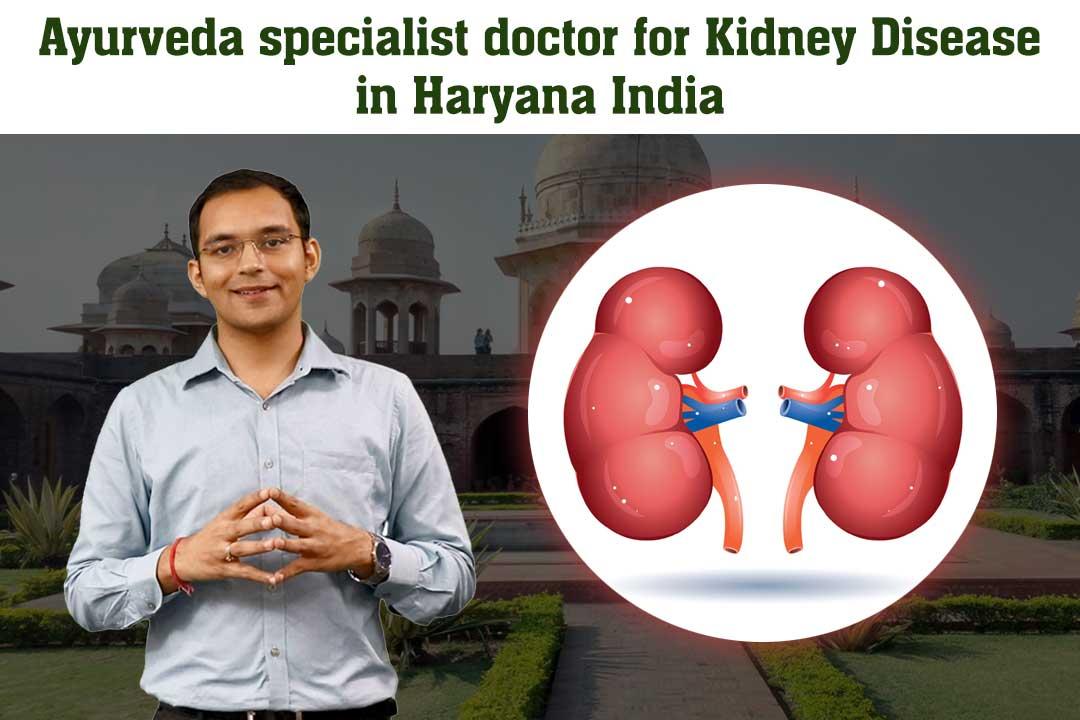 Ayurveda specialist doctor for Kidney Disease in Haryana, India