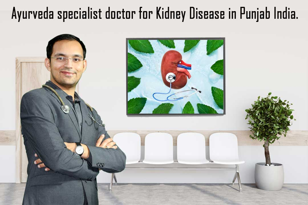 Ayurveda specialist doctor for Kidney Disease in Punjab India