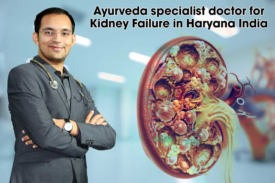 Ayurveda specialist doctor for Kidney Failure in Haryana India