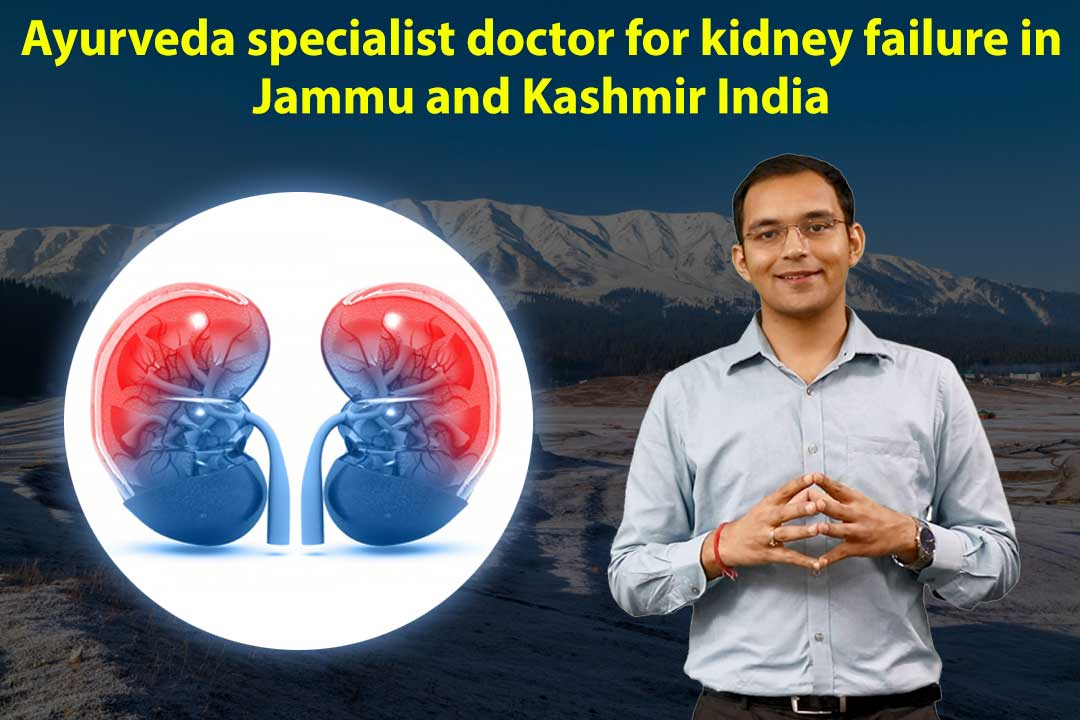 Ayurvedic Specialist Doctor for Kidney Failure in Jammu and Kashmir India