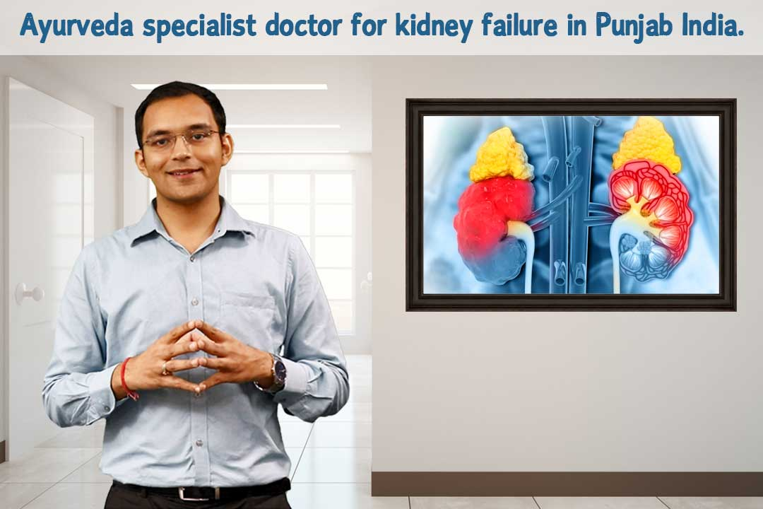 Ayurveda specialist doctor for kidney failure in Punjab India