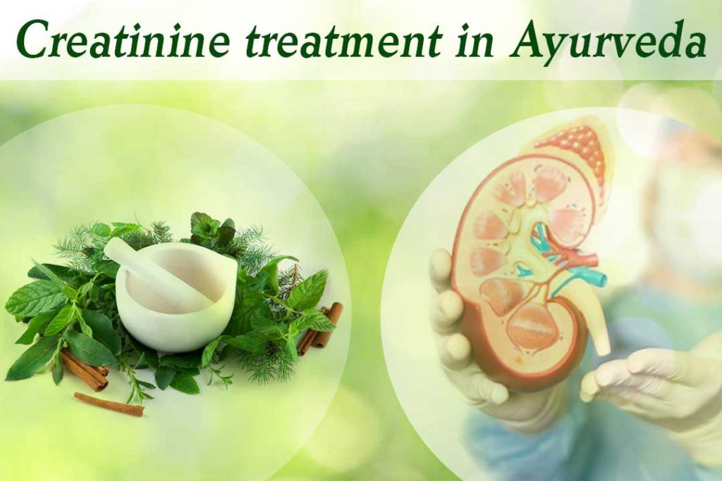 Creatinine treatment in Ayurveda- A safe way to goodbye kidney disease