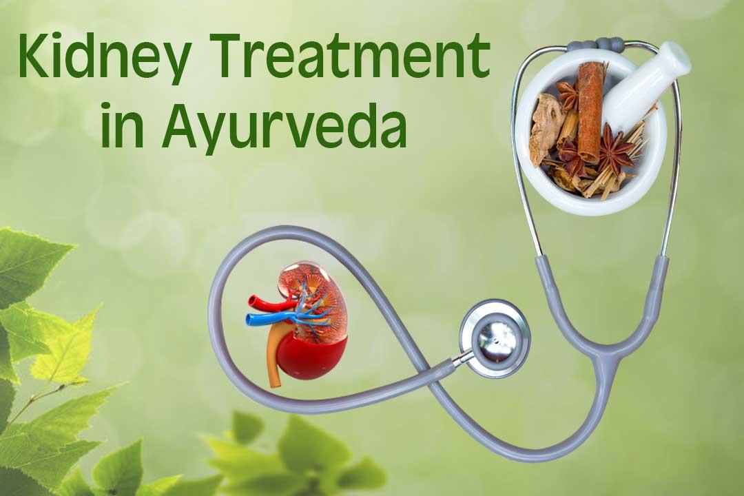 Kidney-treatment-in-Ayurveda