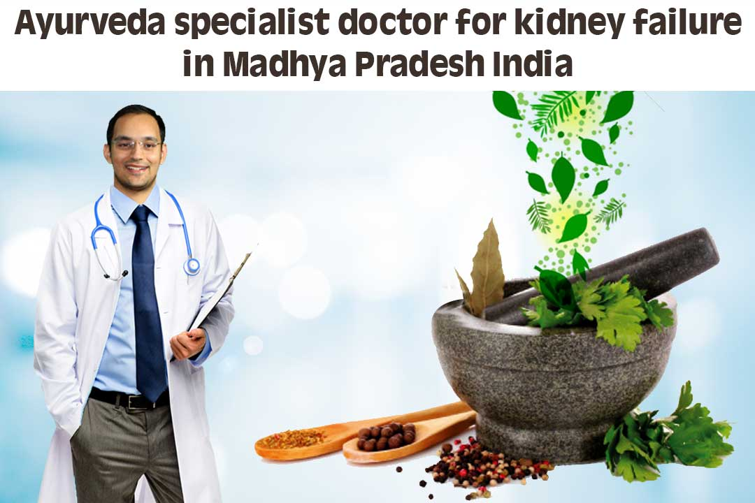 Ayurveda specialist doctor for kidney failure in Madhya Pradesh India
