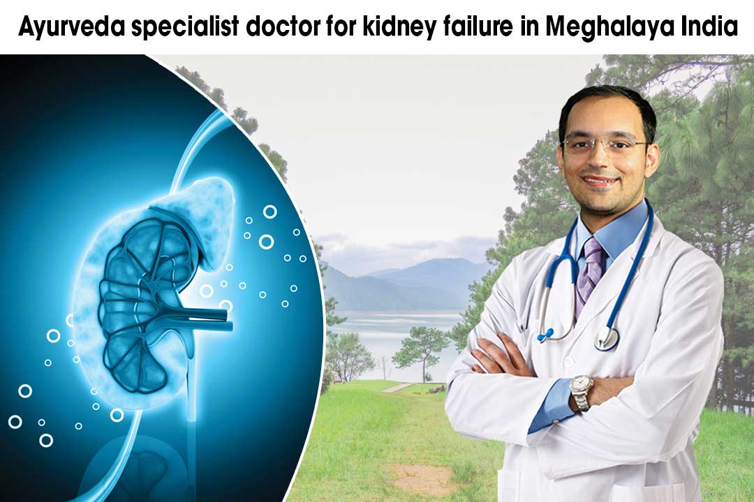 Ayurveda specialist doctor for kidney failure in Meghalaya India