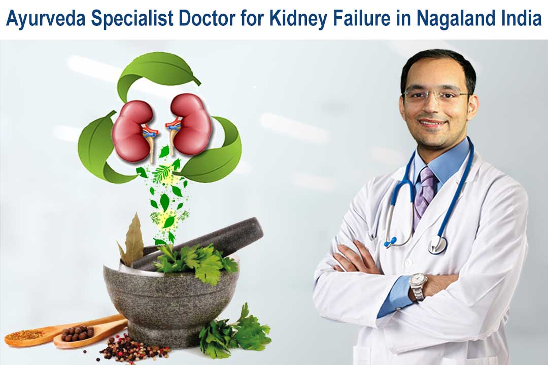 Ayurveda specialist doctor for kidney failure in Nagaland India