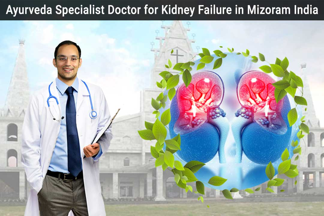 Ayurveda specialist doctor for kidney failure in Mizoram India