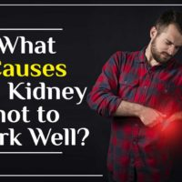 kidney not to Work Well