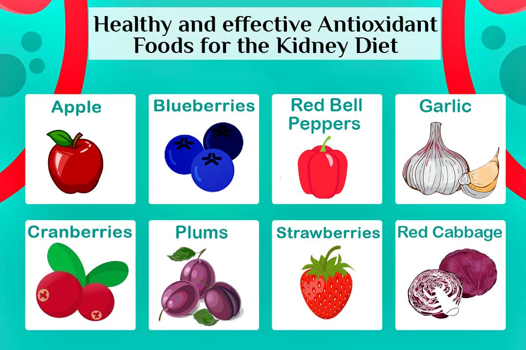 Healthy and Effective 10 Antioxidant Foods for the Kidney Diet