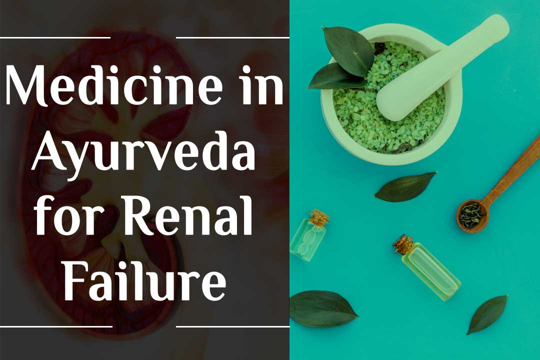 medicine in Ayurveda for renal failure