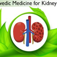 Ayurvedic medicines for kidney cyst