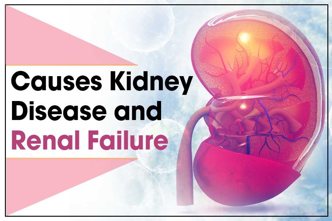 causes kidney disease and renal failure